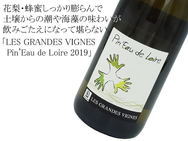 ドメーヌ・レ グランド ヴィーニュ /Pin'Eau de Loire 2019  ピノー ド ラ ロワール 2019