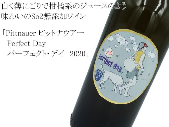 Pittnauer  ピットナウアー  Perfect Day パーフェクト・デイ
