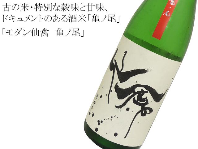 モダン仙禽 亀ノ尾