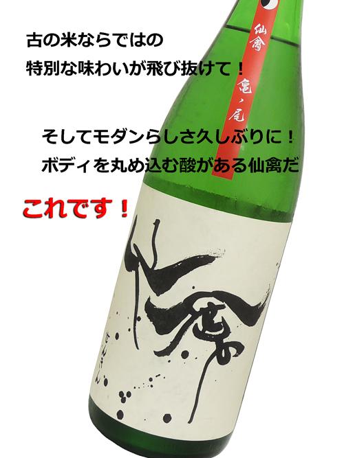 モダン仙禽 亀ノ尾 生酒