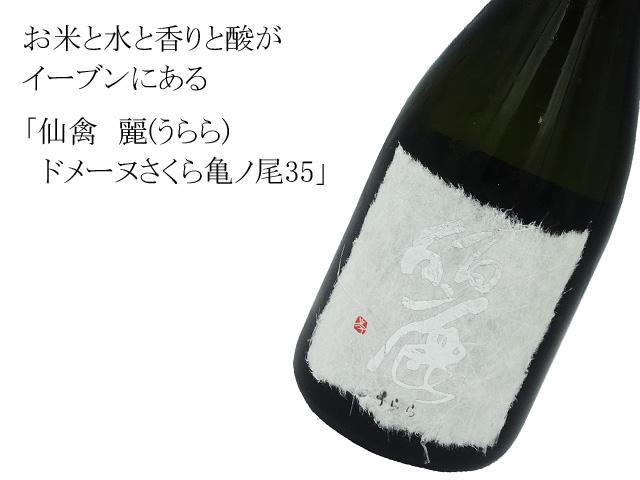 仙禽 麗 (せんきんうらら) ドメーヌさくら亀ノ尾35