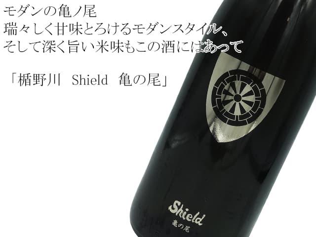 楯野川 Shield 亀の尾