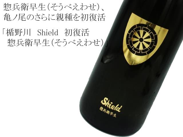 楯野川 Shield 初復活 惣兵衛早生(そうべえわせ)