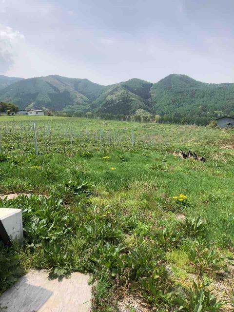 HIKARU FARM (ドメーヌ長谷)和シードル